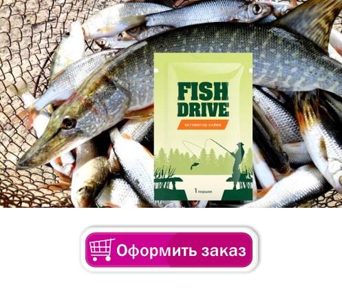 Drive Fish купить в Кинешме